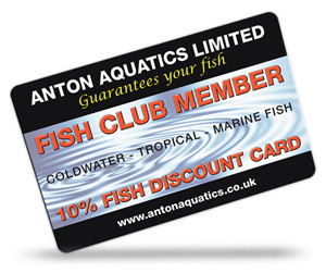 Amwell Aquatics Limited